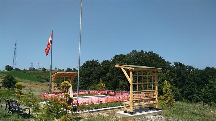 Resim Şehidin Mezarı Düzenlendi